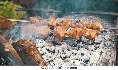 Shish Kebab is Cooked on the Grill in the Forest - The shish...