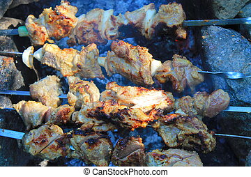 Shish kebab on bonfire