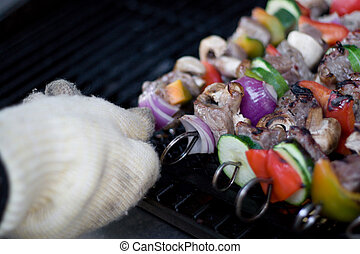 Shish Kebabs on the Grill