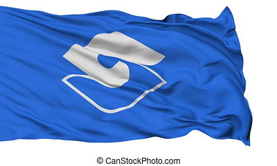 Shizuoka Capital City Flag, Shizuoka Prefecture of Japan,...
