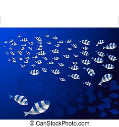 shoals of fish in the deep