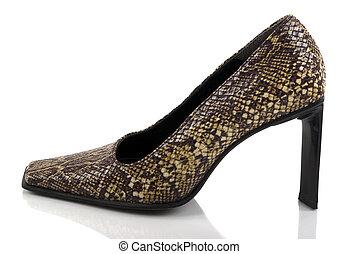 Shoe - Designer shoe