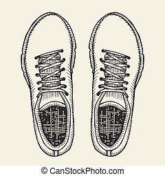 shoes., tető, skaters, nézet.