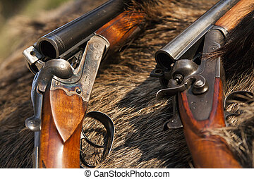 two guns on the skin of wild pigs