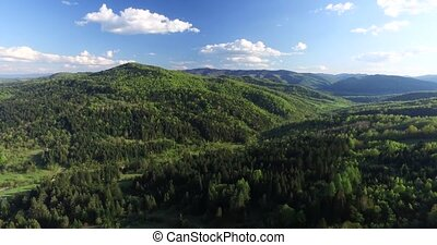 Shooting high above the forest in the mountains