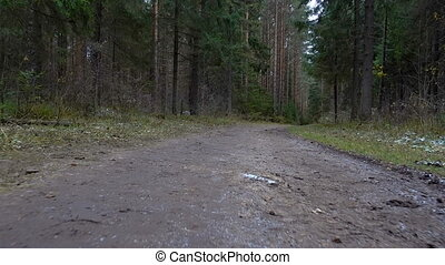Shooting of dirty trail in the forest
