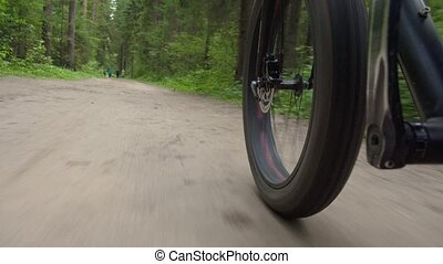 Shooting of moving bicycle on the road in forest - Video of ...