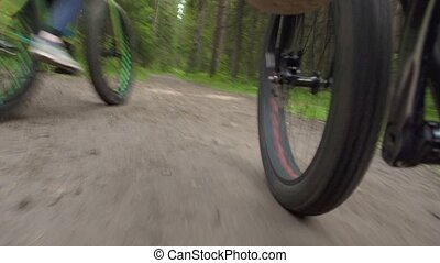 Shooting of moving fat bike on the road in summer park - ...
