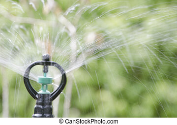 Shooting Sprinkler - The sprinkler is shooting out a stream...