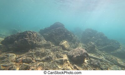 shooting underwater action camera. bottom, litter and lonely...