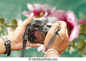 Shooting with a slr camera - Nature photographer shooting...