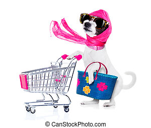 shopping dog diva