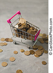 Shopping trolley with coins for finance concept
