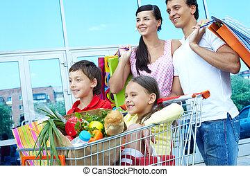 Shopping weekend - Couple with shopping bags pushing cart...
