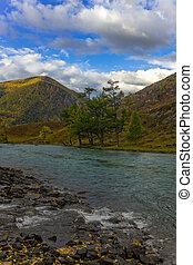 shore of a mountain river
