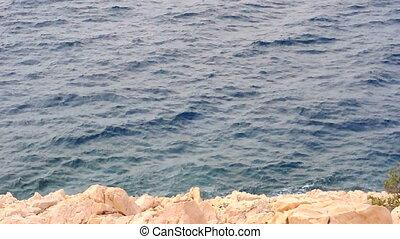 Shore of an ocean