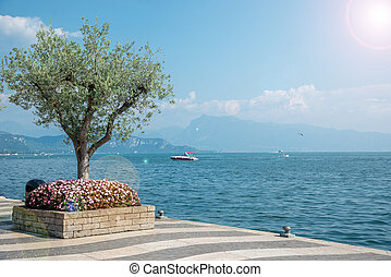 shore of Lake Garda