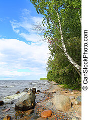 Shore of Lake Onega