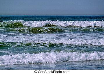 Shore of Pacific Ocean in California