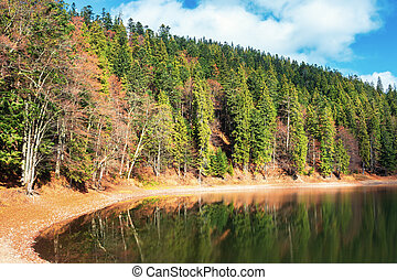 shore of the lake in autumn