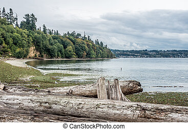 Shoreline At Saltwater State Park - A view of the shoreline...