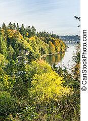 Shoreline Fall Colors 2