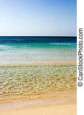 Shoreline - Landscape of the sea and the beach in a clear ...
