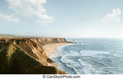 shore Panorama shot of great shore, ocean and birds in the...
