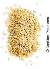 shortinho, arroz marrom