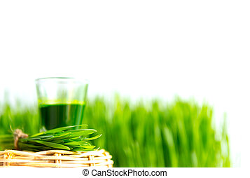 Shot glass of wheat grass with fresh cut wheat grass - Shot...