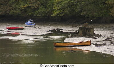 Shot of an Irish river at low tide