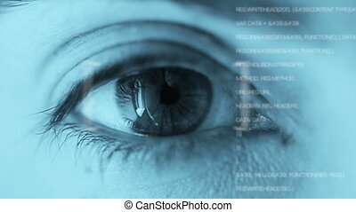 Eye recognition biometric identity tool - Shot of Eye...