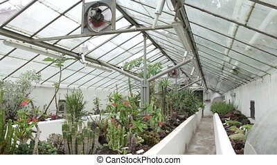 Modern greenhouse - Shot of Modern greenhouse
