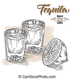 Shot of tequila drink. Hand drawn two glasses of tequila....