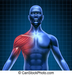 Shoulder muscle pain - Muscle pain represented by a blue...