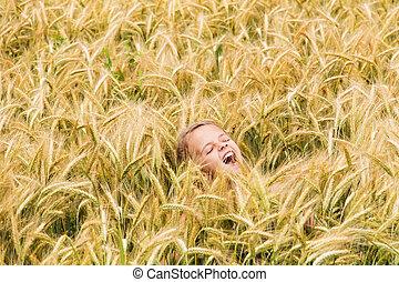 shouting, menina, trigo, campo