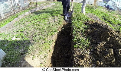 Shovel digging in the ground