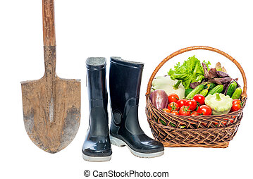 Shovel, rubber boots and basket with a crop of vegetables on a white background