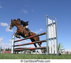 A horse clearing a jump at the Horse of the Year show 2007 in Hastings New Zealand