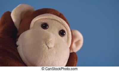 show., monkey., pojęcie, błękitny, marionetka, zabawka, tło...