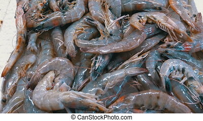 Showcase with Crayfish in the Ice of the Street Market....