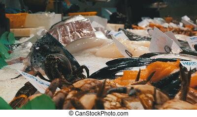 Showcase with Seafood in La Boqueria Fish Market. Barcelona....