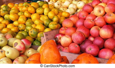 Showcase with Tangerines, Apples, Pears, Persimmon and...