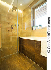 Shower on wall