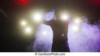 showman, projecteurs, audience, vue., applaudir, divertissement, étape, mains arrière