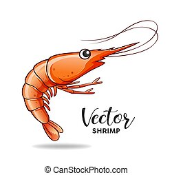 Shrimp design, vector isolated on white background