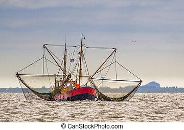 Shrimp fishing cutter ship on the Wadden sea - Shrimp...