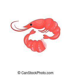 Shrimp fresh seafood vector Illustration on a white background