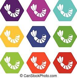 Shrimp icon set color hexahedron