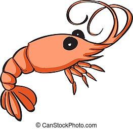 Shrimp, illustration, vector on white background.